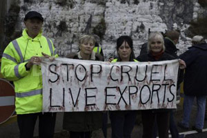 Live Exports Poll