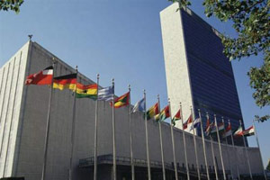 United Nations Anketa