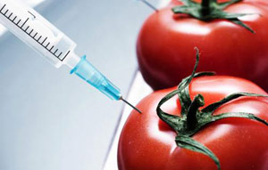 Modificate genetic Foods Sondaj